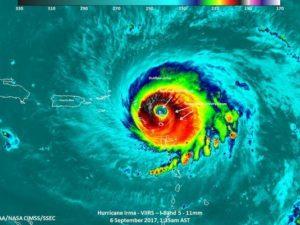 Cover photo for Hurricane Preparedness: Are You Ready?