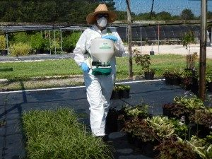 granular herbicide application
