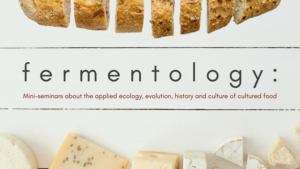 fermentology