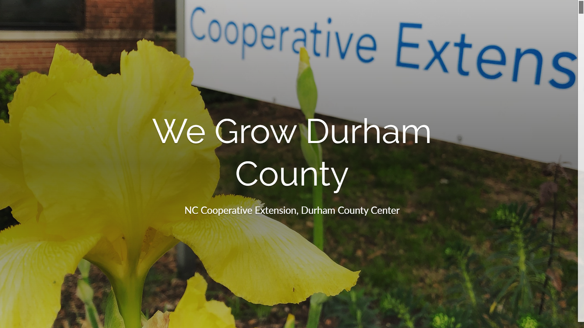We Grow Durham County newsletter cover page