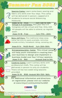 Summer Fun flyer page 2