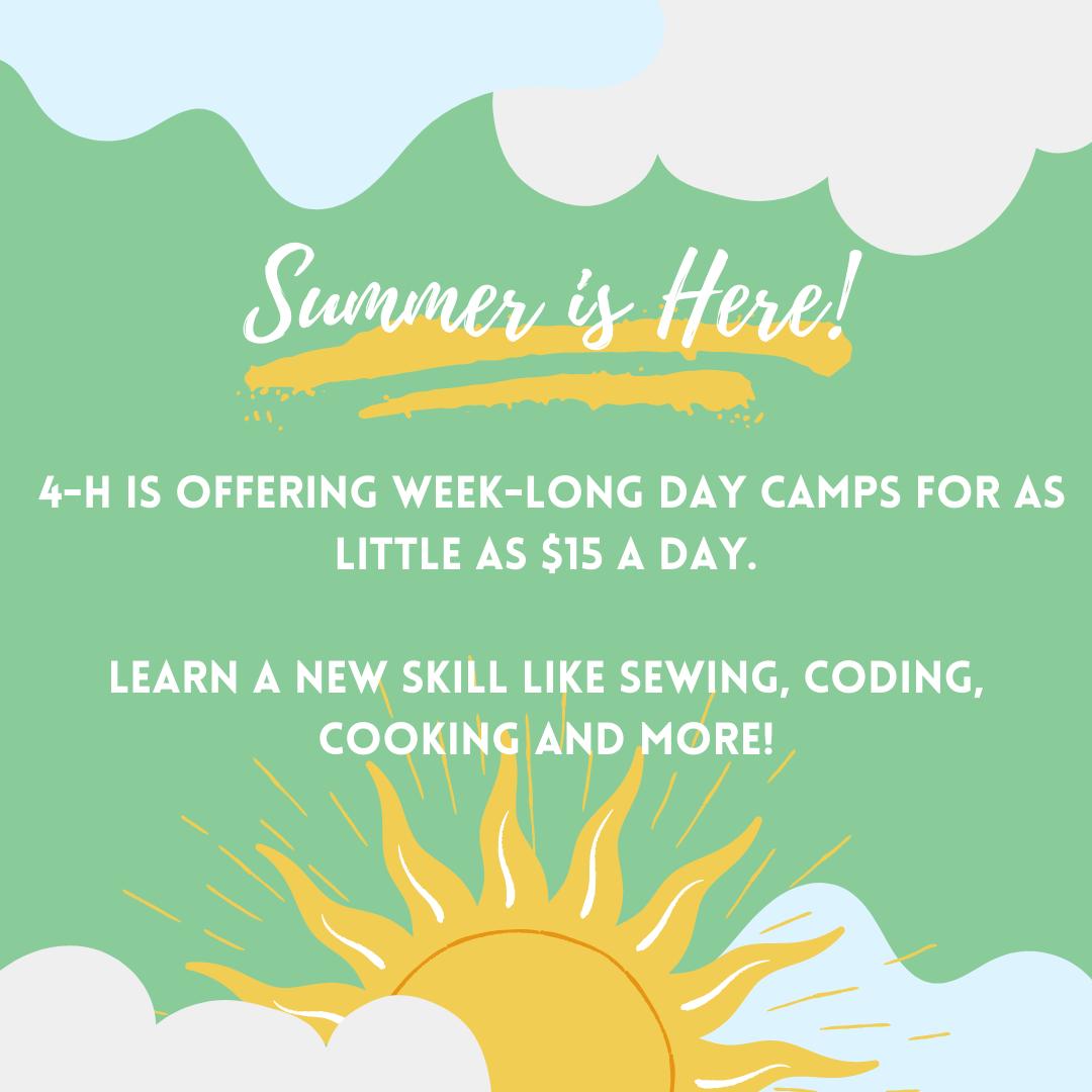 4-H Summer Fun flyer image